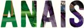 STATIC NAME – Anais